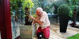 Plantes Grimpantes Pot Pour Terrasse : jardin d 39 hubert ~ Premium-room.com Idées de Décoration