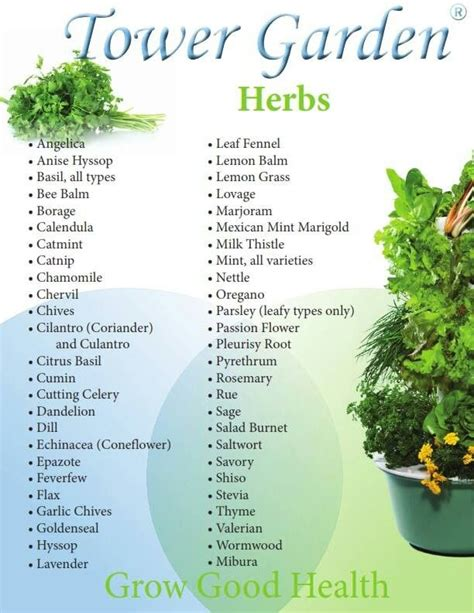 What Can You Grow In A Vertical Garden herbs you can grow in your tower garden living green