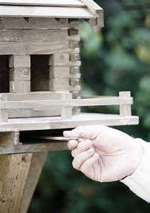 Schublade Selber Bauen : schublade hand vogelhaus selber bauen mit der richtigen bauanleitung ~ Orissabook.com Haus und Dekorationen