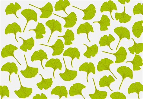 ginkgo leaf background   vectors clipart