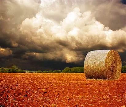 Harvest Screensaver Wallpapersafari