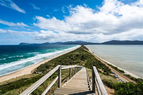 Bruny Island Tasmania Must See Attractions And Things To Do