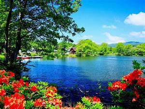 Beautiful, Nature, Scenery, Wallpapers, Beautiful, Scenery, Wallpaper, Desktop, Wallpapers, Hd