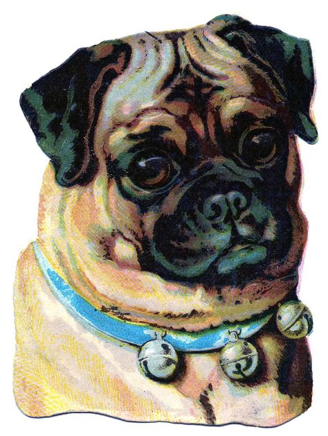 vintage clip art darling pug  graphics fairy