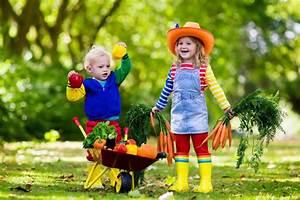 Kindergeburtstag Im Garten Ideen Fr Deko Spiele Essen