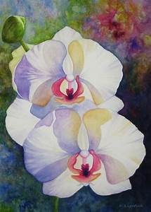 17 Best images about Art - Watercolor orchids on Pinterest ...