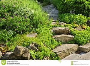 chemin de jardin avec l39amenagement en pierre photo stock With chemin de jardin en pierre