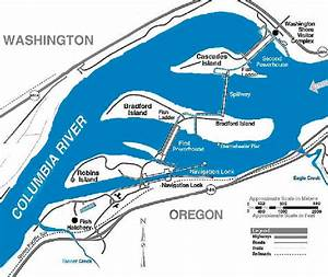 Map Of Bonneville Dam  Showing Fish Ladder Locations On