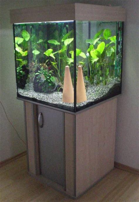 aquarium cube 200 l aquariumsw 252 rfel 60x60x60 216l aquarium forum