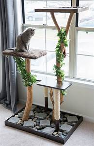 Make, A, Cat, Tree, Using, Real, Branches, My, Amazing, Diy, Cat, Tree