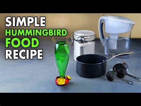hummingbird food youtube