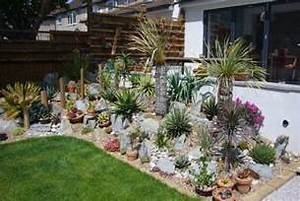 Giardino roccioso piante grasse decorazioni per la casa