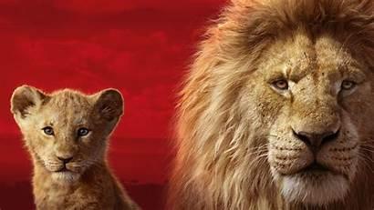 Lion King Simba Mufasa 5k Wallpapers 1080
