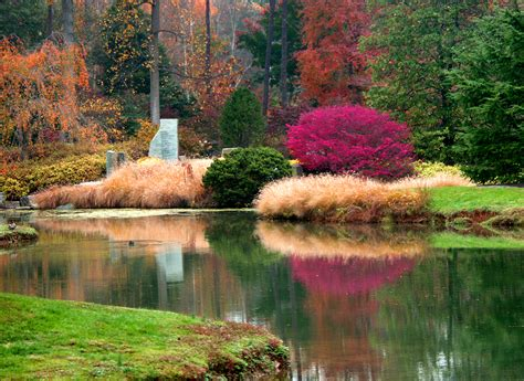 Brookside Gardens Home To Beautiful Tribute To Washington