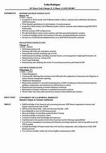 sap fico consultant resume samples velvet jobs With sample resume for sap fico consultant