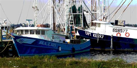 Shrimp Boat For Sale Craigslist by Craigslist Shrimp Boats For Sale Gulf Coast Autos Post