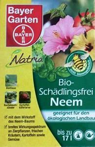 Neem Gegen Blattläuse : bayer bio sch dlingsfrei neem 50 ml gegen milben l use ~ Watch28wear.com Haus und Dekorationen
