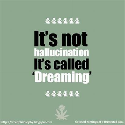 Weed Quotes Hallucination Marijuana Cool Quotesgram Funny