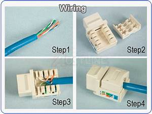 3port Wall Plate  3 Cat5e Rj45 Keystone Jacks W  Cap