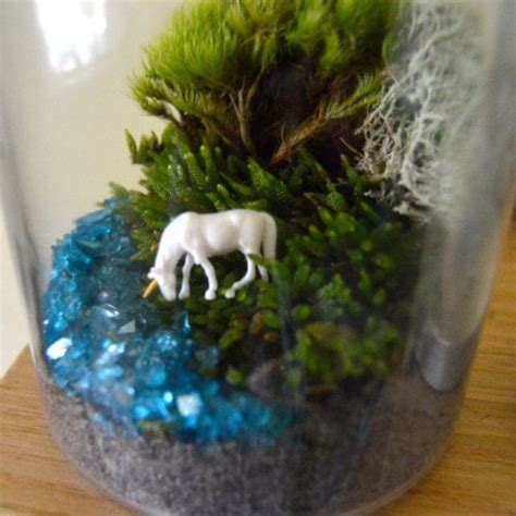 25 best moss for century 30 best images about terrarium ideas on models