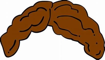 Hair Brown Clipart Wig Clip Boy Cliparts