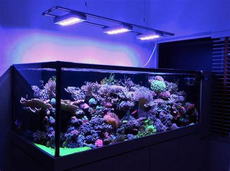 ai hydra fiftytwo black 136w re leds haute puissance pour l 233 clairage des aquariums r 233 cifaux