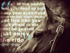 Enjoy the ride   Quote...