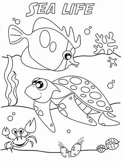 Coloring Ocean Pages Waves Popular