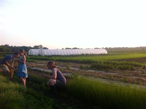 Blue Hill Farm   Amy HirschAmy Hirsch