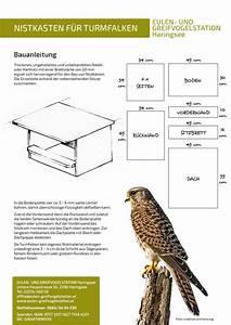 Nistkästen Selber Bauen : nistk sten bauen eulen und greifvogelstation haringsee ~ Eleganceandgraceweddings.com Haus und Dekorationen