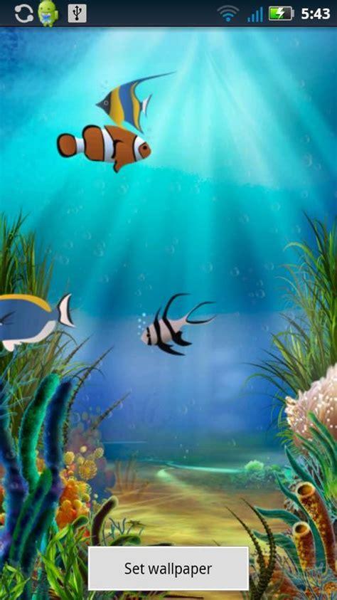 water fish wallpaper   gallery