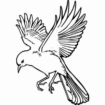 Outline Bird Landing Svg Clip Arts Clipart