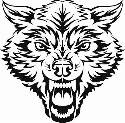 Wolf Tribal Tattoos Tattoo Mean Clipart Tatuajes