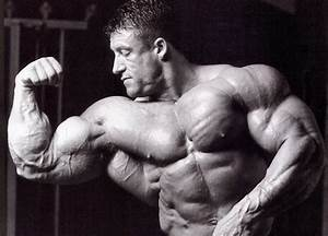 Muscle: The Alarming World of Professional Bodybuilding ...