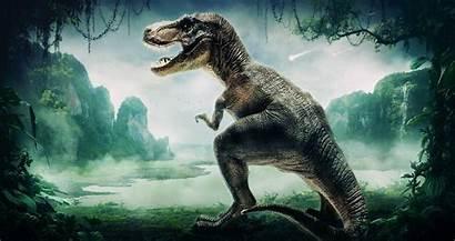Dinosaur Desktop Wallpapers Backgrounds Computer