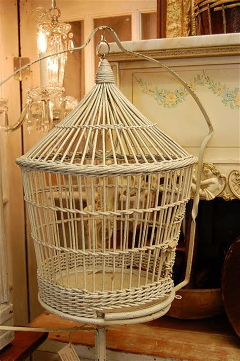 cool parrot cages cool bird cage mad about birdies pinterest