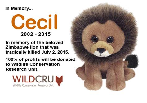 cecil lion beanie baby marketwatch