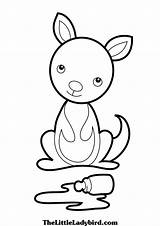 Kangaroo Coloring Printable Koala Clipart Kangaroos Sheets Clipartmag Animal Disney Australian Adult sketch template