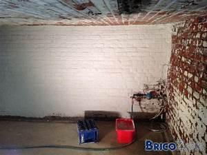 Refaire Un Mur Humide : refaire mur cave ~ Premium-room.com Idées de Décoration