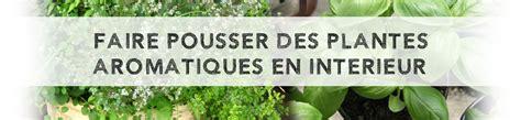 faire pousser des plantes aromatiques en int 233 rieur le