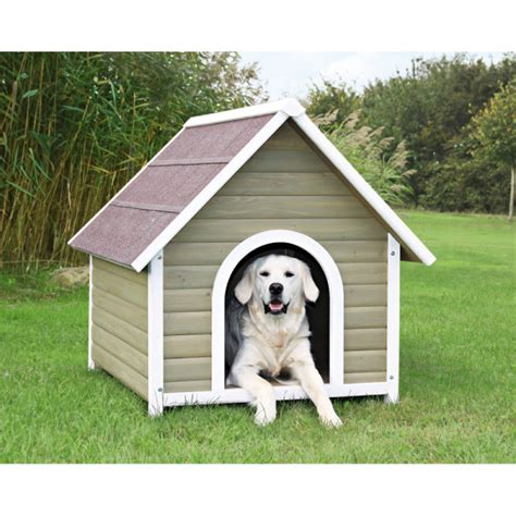 cutest dog houses    net  huffpost