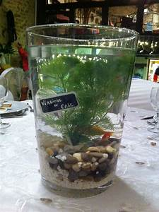 Centre De Table Mariage : centre de table avec poisson rouge centre de table ~ Melissatoandfro.com Idées de Décoration