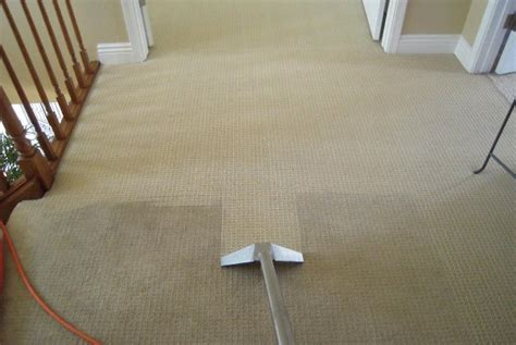 pros cons costs  carpet cleaning services