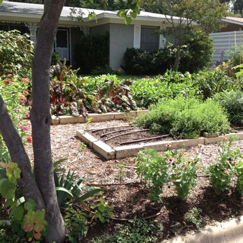 17 best images about front yard vegetable gardens on