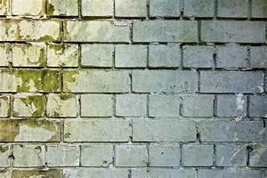 Grüner Schimmel Wand : kostenloses foto durch die wand wand mauerwerk kostenloses bild auf pixabay 3194516 ~ Whattoseeinmadrid.com Haus und Dekorationen