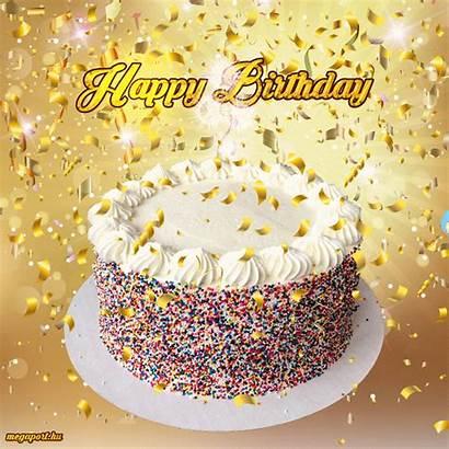 Birthday Happy Cake Animation Sunshine Animated Ma