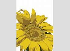 Sunflower Background Pattern Vector Royalty Free Stock