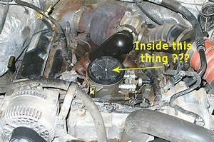 7 3 Powerstroke Fuel Filter Location
