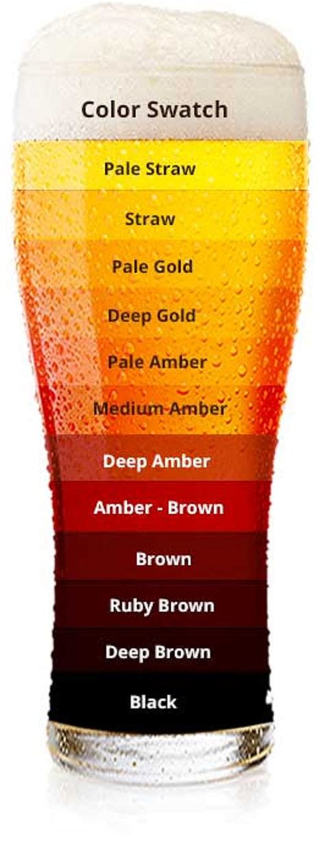 color is what ipa quest on quot what s your favorite color of