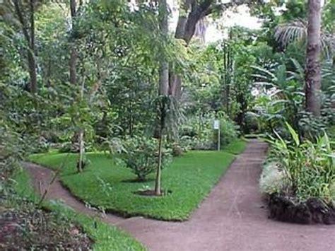Jardin Botanico  Ciudad De Guatemala, Guatemala